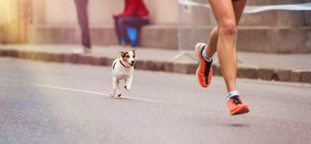Apprendre à courir les 5km