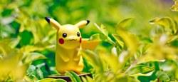 Plusieurs Pokémons aperçus devant la bibliothèque