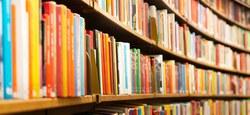 La bibliothèque vend ses surplus
