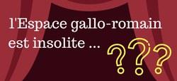 Visite guidée à l'Espace gallo-romain