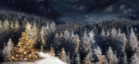 Conférence « Les sapins de Noël »