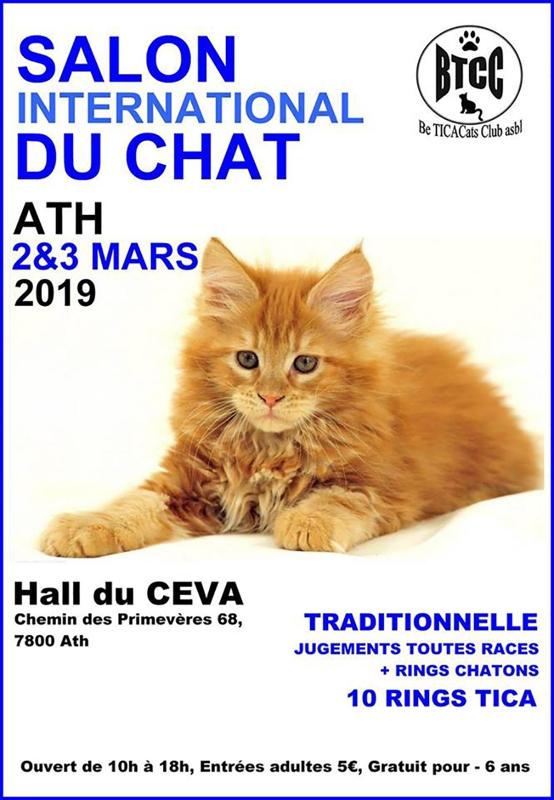 """Résultat de recherche d'images pour """"salon du chat ath 2019"""""""