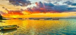 Mauritius Night