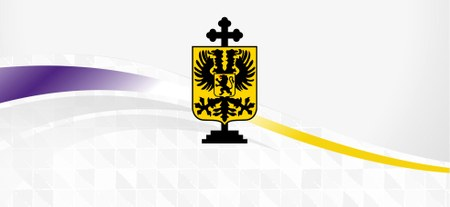 Dispositifs de sécurité et d'accès durant la Ducasse
