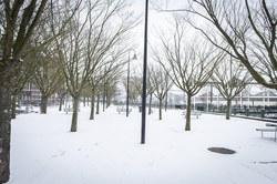 ath neige 2k19 010