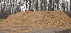 La Ville d'Ath revalorise ses déchets verts en combustible