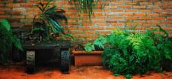 Jardiner ma ville - Permis de végétaliser