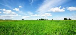 Vente de gré à gré d'un terrain à Meslin-l'Evêque